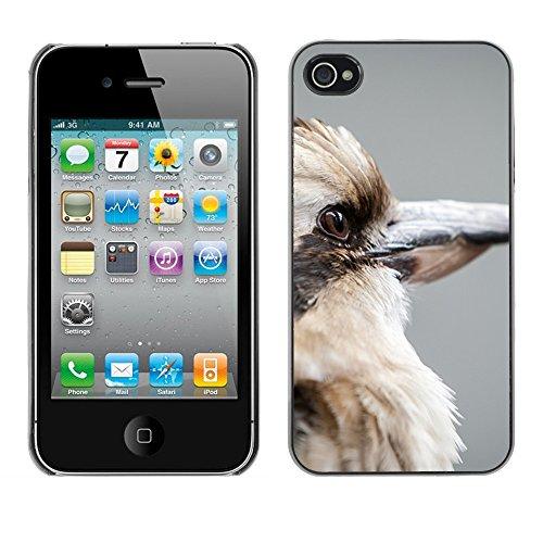 Premio Sottile Slim Cassa Custodia Case Cover Shell // F00014711 oiseau // Apple iPhone 4 4S 4G