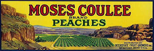 Moses Coulee Peach Label (24x36 SIGNED Print Master Giclee Print w/Certificate of Authenticity - Wall Decor Travel Poster) (Peach Label)