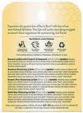Burt's Bees 100% Natural Origin Moisturizing Lip