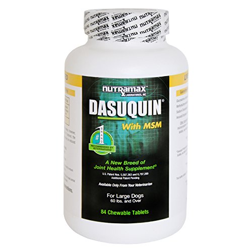 Nutramax Dasuquin with MSM Chewables, Large Dog, 84 Count by Nutramax Laboratories