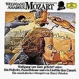 Wir entdecken Komponisten - Wolfgang Amadeus Mozart Vol. 3