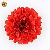 HATABO Ball Flowers Home Decoration Lilie 10pcs 6'' (15cm) Wedding Decorative Props Tissue Paper Pompoms Pom Poms Balls Wedding Party Home Decoration (Random)