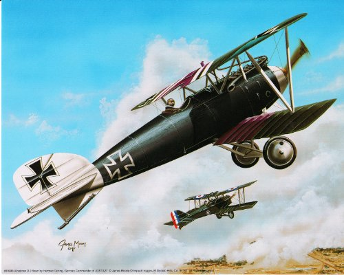 Military Biplane Albatross D.iii Airplane Aviation Picture Art Print Poster (16x20) ()
