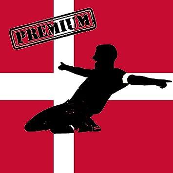 dansk fodbold liga