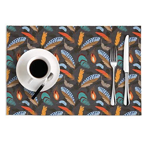 Kitchen Bird Feathers High Temperature Resistant Easy To Clean PVC Placemat Set 2 Cool Non-Fading