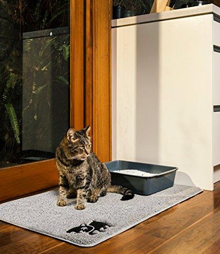 Cat Protecion Jumbo Sale Sale  November