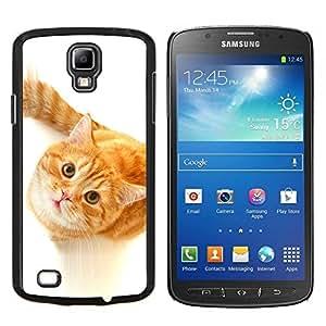Stuss Case / Funda Carcasa protectora - Lindo Gato curioso de Orange - Samsung Galaxy S4 Active i9295