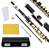 Glory Key of C Piccolo with Pro Case, Joint Grease, Cleaning Cloth and Rod, and Gloves, Black/Gold keys ~ More COLORS Available ! CLICK on LISTING to SEE All Colors