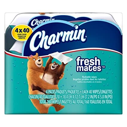 Charmin Freshmates Flushable Wet Wipes, 40 Count (Pack of 12) (2 pack