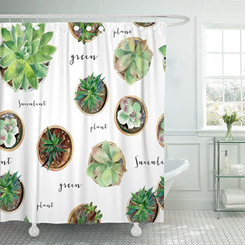 TOMPOP Shower Curtain Colorful Garden Watercolor Succulent and Much More Green Southwest Waterproof Polyester Fabric 60 x 72 Inches Set with Hooks by TOMPOP