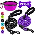 COOYOO 2 Pack Dog Leash 5 FT Heavy Duty Radiant Colors, Reflective Rope - Padded Handle - Reflective Dog Leash for Medium Large Dogs with Collapsible Pet Bowl