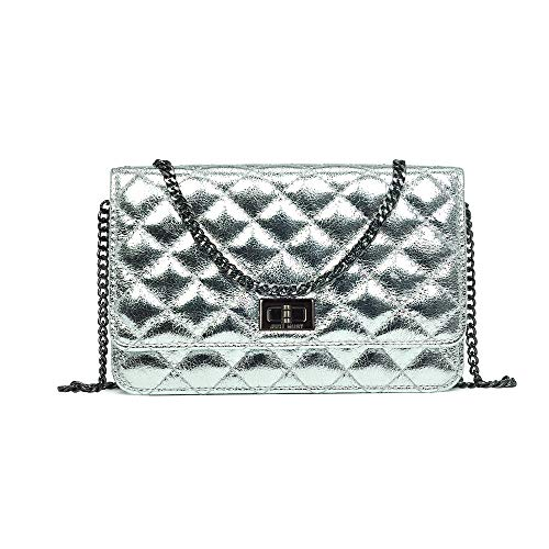 Small Crossbody Bag Shoulder Bag Quilted Purse for Women With Adjusting Metal Chain Strap (Space silver)