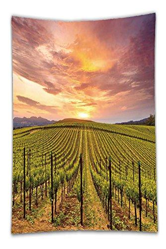 Nalahome Fleece Throw Blanket napa valley vineyards autumn sunrise 410249041 (Ny Bath Napa)