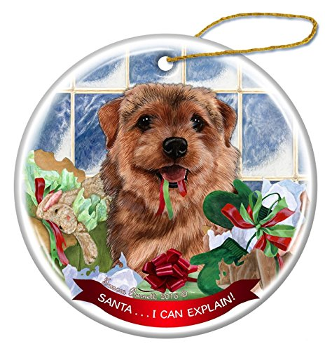 (Norfolk Terrier Dog Porcelain Hanging Ornament Pet Gift 'Santa.. I Can Explain!' for Christmas Tree and Year Round)
