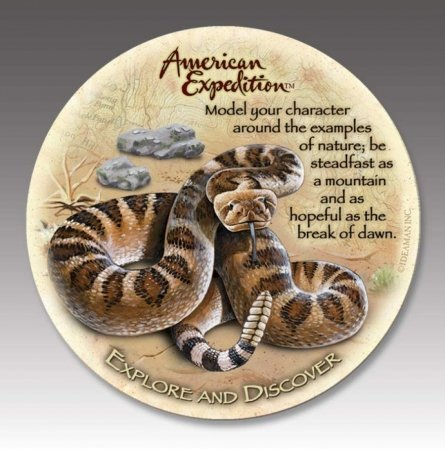 (4 American Expedition Stone Coasters Rattlesnake)