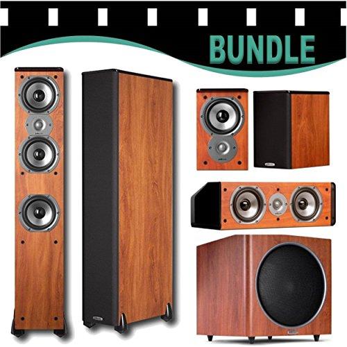 Best of Polk Audio Home Theater System (2) TSi400 (2) TSi100 (1) CS10 (1) PSW125