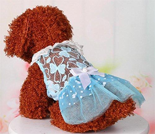 Pizzo Del Fiocco M Yushangtong Esterno Pet Blu Domestico Gatti Di Gatto Vestito Moda Forniture au Abbigliamento Pannello Vestiti Cane Estate Dell'animale RqaPZ