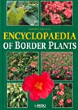 img - for Encyclopaedia of Border Plants book / textbook / text book