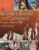 Bovine Laminitis and Lameness: A Hands on Approach, 1e