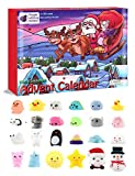 The Original Purple Ladybug Novelty Mochi Squishy Toys 2019 Advent Calendar for Kids, with 24 Different Kawaii Jelly Mochi Squishies Including Santa! Christmas Countdown Calendar for Girls and Boys!