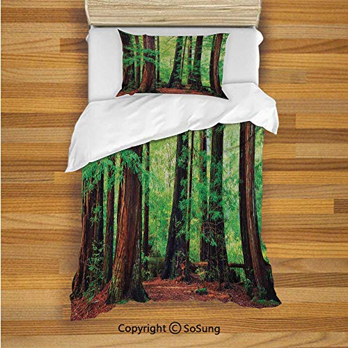 Woodland Decor Kids Duvet Cover Set Twin Size, Redwood Trees Northwest Rain Forest Tropic Scenic Wild Nature Lush Branch 2 Piece Bedding Set with 1 Pillow Sham,