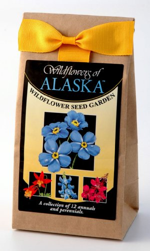 Alaska Wildflower Seed Garden Bulk Mix 3.5 oz Covers 350 Square Feet