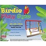Birdie Play Gym Centre Bird Toy, Large