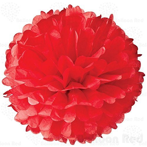 [8 Inch Tissue Paper Flower Pom Poms, Pack of 10, Red] (Homemade Kids Halloween Costumes 2016)