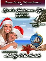 Love's Christmas Gift (The Salior Romance Series Book 3)