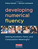 Developing Numerical Fluency