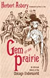 img - for Gem of the Prairie: An Informal History of the Chicago Underworld book / textbook / text book