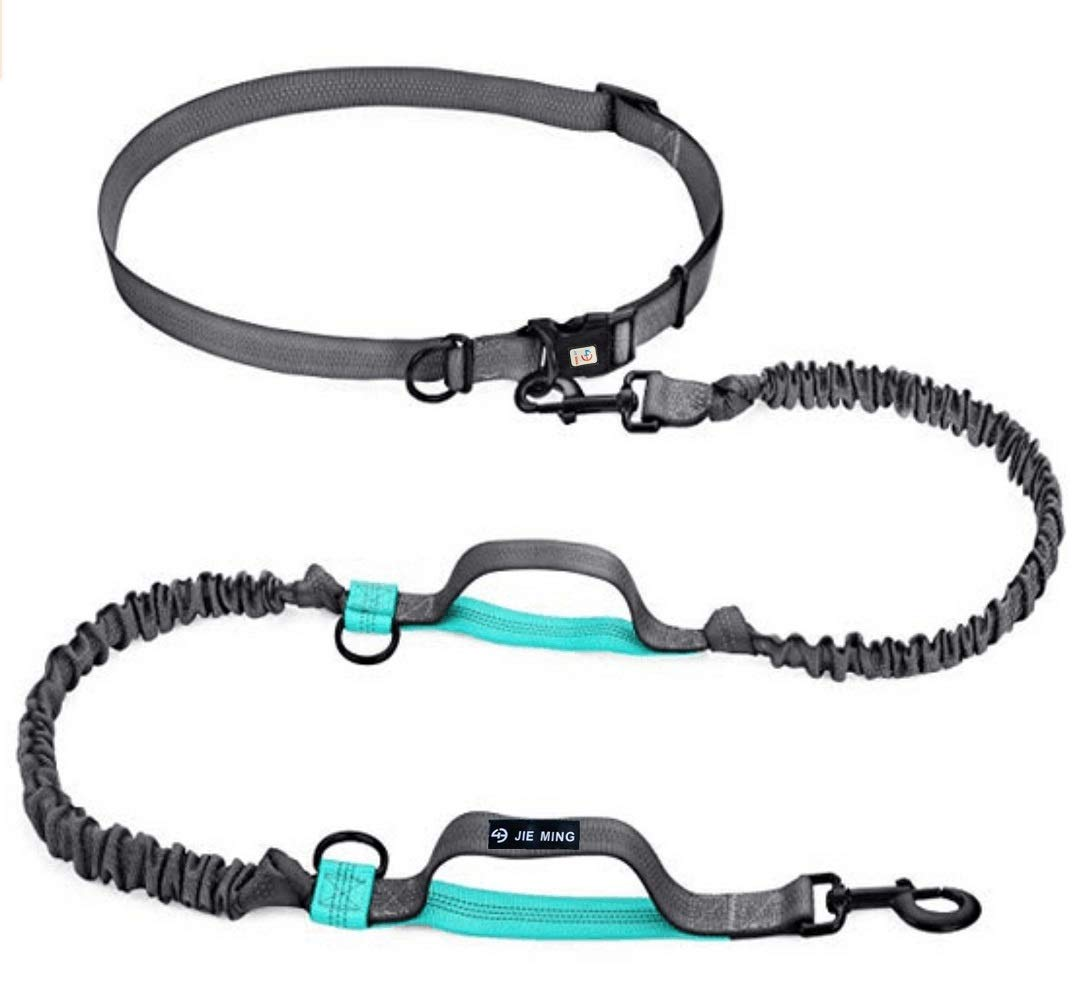 Jieming Pet Dreamland Hands Free Dog Leash Shock-Absorbing Retactable Hands Free Waist Dog Leash with Dual Bungees Free Control for up to 150lbs Extra Long and Double Clasp Large 2 Dogs (Green)
