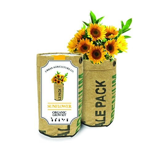 (Urban Agriculture Organic Flower Growing Kit includes Organic Soil & Seeds Sunflower)