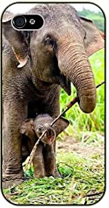 Elephant and baby playing as family - iPhone 5C black plastic case / Animals and Nature