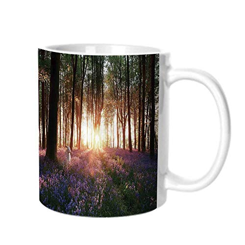 Farm House Decor Fashion Coffee Cup,Stunning Bluebell Woods Sunrise with White Rabbit Sunny Spring Day in Woodland For office,One ()