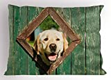 Ambesonne Funny Pillow Sham by, Curious Dog is Looking from Window in Old Rustic Wooden Fence Cheerful Print, Decorative Standard Size Printed Pillowcase, 26 X 20 Inches, Forest Green Brown