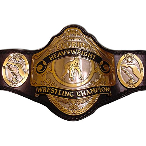 Haiosports NWA Florida Heavyweight Championship Replica Belt (Nwa Replica Belt)