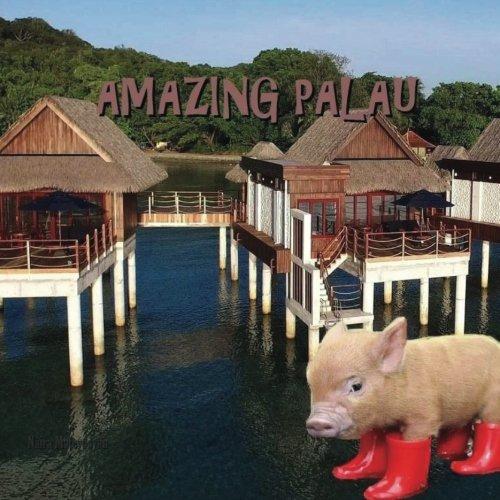 Amazing Palau