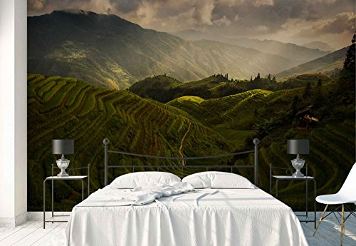 Photo wallpaper wall mural - Hill Slope Stepwise Terraces Fields - Theme Travel & Maps - XL - 12ft x 8ft 4in (WxH) - 4 Pieces - Printed on 130gsm Non-Woven Paper - 1X-733766V8 by Fotowalls Photo Wallpaper Murals