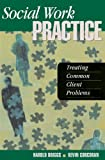 Social Work Practice : Treating Common Client Problems, Harold E. Briggs, 0925065358