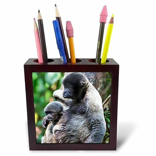3dRose Danita Delimont - Primates - Brazil, Amazon, Manaus. Female common woolly monkey with baby. - 5 inch tile pen holder (ph_278194_1)