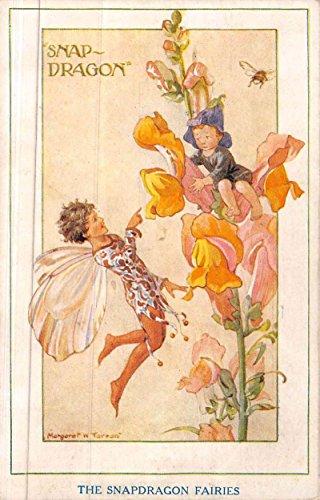 Snap Dragon Fairies Flowers Fantasy Margaret Tarrant Antique Postcard - Fairy Postcard Fairies Flower