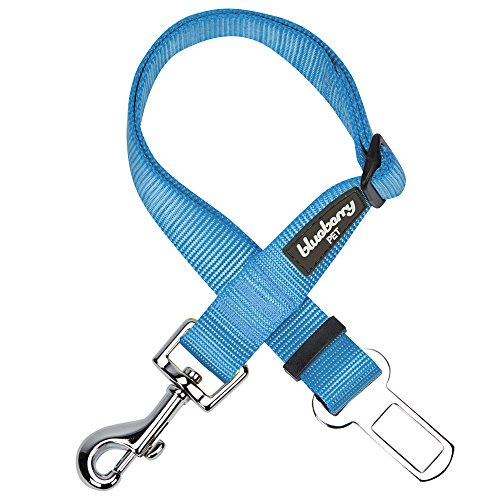 - Blueberry Pet 12 Colors Classic Dog Seat Belt Tether for Dogs Cats, Medium Turquoise, Durable Safety Car Vehicle Seatbelts Leads Use with Harness