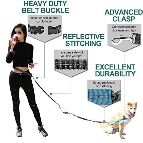 """COLLASARO Durable Hands Free Dog Leash for Running, Walking, Hiking, with Adjustable Waist Belt (Fits up to 47"""" Waist) and Shock Absorbing Bungee (CLA-Gray/Teal)"""