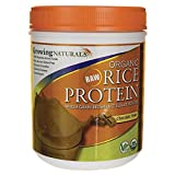 Cheap Growing Naturals Organic Rice Protein Powder, Chocolate, 16.8 Ounce