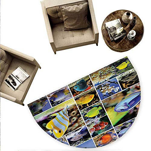 - Ocean Semicircular Cushion Collage of Underwater Photos with Collection of Tropical Fish Oceanic Art Print Entry Door Mat H 70.8