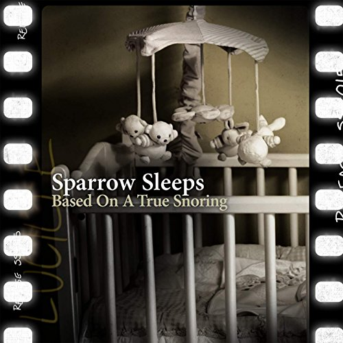 Amazon.com: The Best of Me: Sparrow Sleeps: MP3 Downloads