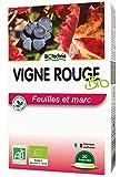 Biotechnie Vigne Rouge Jambes Legeres 20 Ampoules