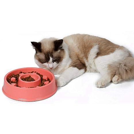 Comedero para Perros con Forma de Cuenco para Comida Lenta y Divertida, tazón Interactivo para