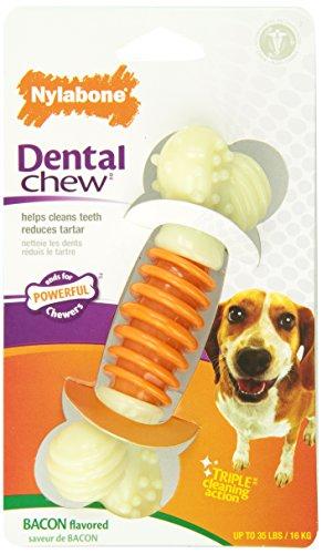 Interpet 982281 Nylabone - Pro Action Zahnpflege-Kauknochen, medium